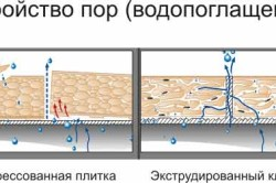 vodopoglojenie plitkami